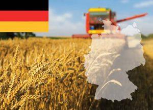 Thông báo tuyển 20 chỉ tiêu đi thực tập hưởng lương tại Đức năm 2019